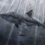 "Great White, oil on canvas, 48x60"", 2020 SOLD"